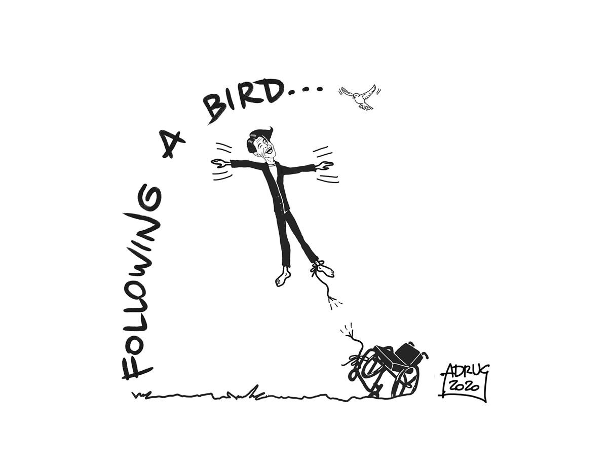 Following a bird